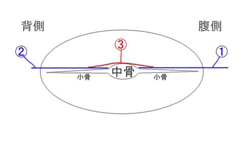 20130612_160953c