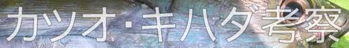 カツオ・キハダ考察