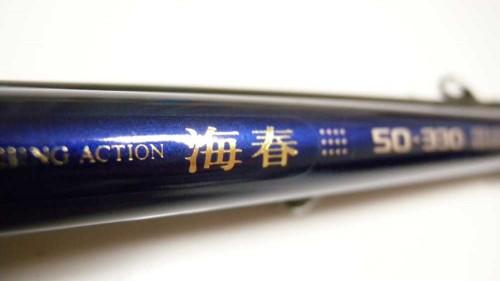 DSCN5251b