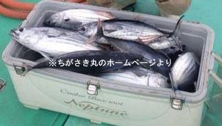 chigasaki_2014110717293_10b