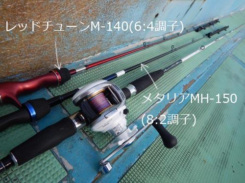 DSCN6130b