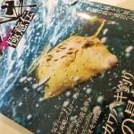 カワハギHyper極意伝が凄い!!