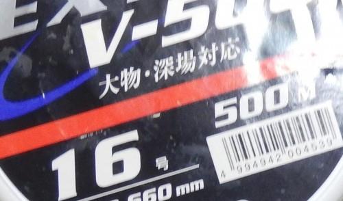 DSCN8672b