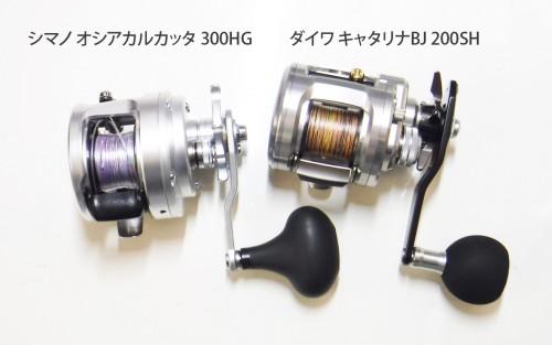 DSCF8026c