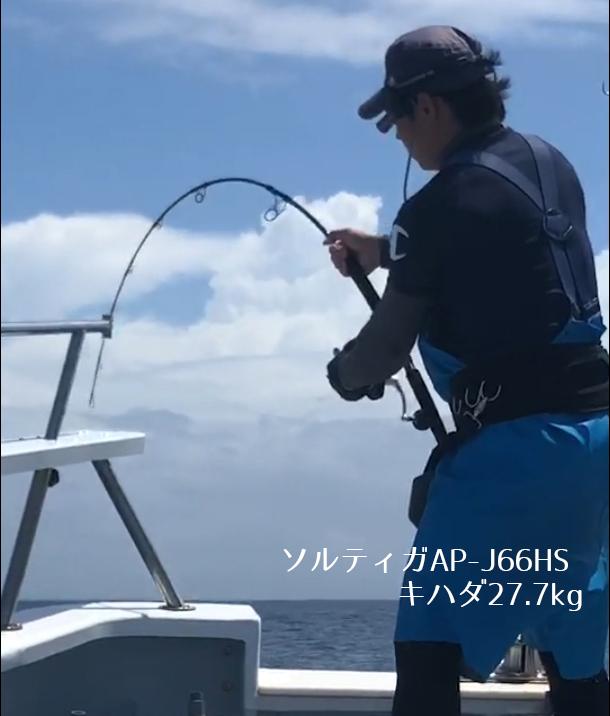 AP-J66HSb