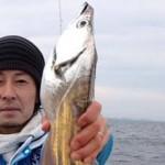 観音崎タチウオ好調も事件発生でテンションヘコヘコ~( iдi )攻略法まとめ(2014/01/25)