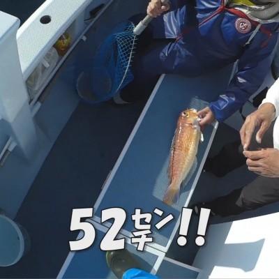 【相模湾アマダイ】ディギング釣法で誘いと潮の激釣パターンと無効パターン (2017/11/19・25)